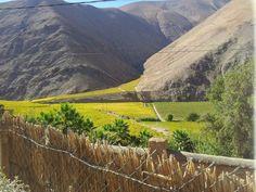 El Valle de Elqui, ubicada en la Región de Coquimbo,  Chile.