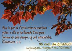 Mujeres que oran Movie Posters, Movies, Gratitude, Grateful, Thanks, Dios, Films, Film Poster, Cinema