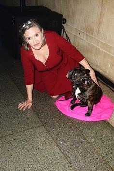 Celebs and Their Pets Photos - ABC News Carrie Fisher & Gary