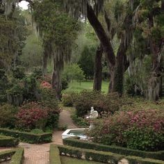... Beautiful Louisiana