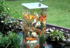 The column is open on the bottom so that the fish can swim up out of the pond and be at eye level if they want to. That's so cool!