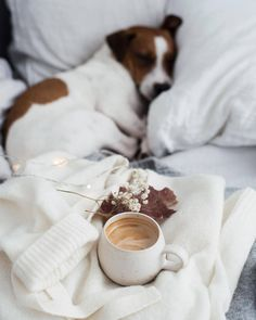"""""""Coffee is far more than a beverage. It is an invitation to life, disguised as a cup of warm liquid. Coffee is an experience, an. Coffee Time, Morning Coffee, Good Morning, Coffee Break, Beautiful Morning, Saturday Morning, Beautiful Life, Coffee Cups, Photo Instagram"""