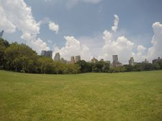 Central Park #newyork