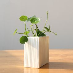 sweet house plant holders. Plant Pot Micro Mini Hanging Planters Garden Flower Holders Succulent  DIY Container with Sweet House for Home Decoration and Holiday Gift Pinterest