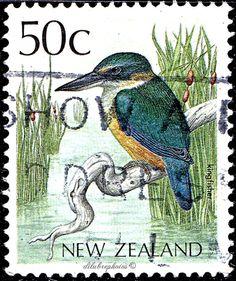 New Zealand.  KINGFISHER.  BIRD TYPE OF 1985. Scott 925 A279, Issued 1988 Nov 2, Litho., Perf. 14 1/2 x 14, 50. /ldb.