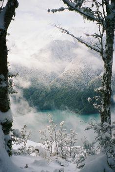 Bill ✔️  Nelson Lakes National Park, New Zealand.    Bill Gibson-Patmore.  (curation & caption: @BillGP). Bill✔️