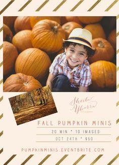 Fall Pumpkin Mini Sessions | Sheila Ybarra Photography | San Antonio Photographer | Child Photographer | Family Photographer