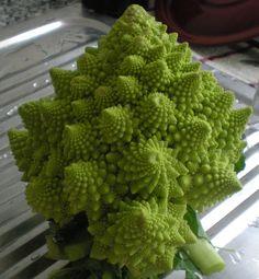 Romanesca: la verdura fractal  El otro día entré en una tienda ecológica, que últimamente están tan de moda (pena de los precios ta...
