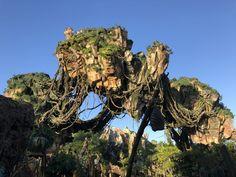 Leselaunen / Wochenrückblick   #Leselaunen #Urlaub #Wochenrückblick #Avatar #Disneyworld #Florida #USA #Reisen Universal Parks, Universal Studios, Lego Hogwarts, Seven Dwarfs Mine Train, 3d Film, Star Wars Shop, Pacific Crest Trail, Hard Rock Hotel, Downtown Disney