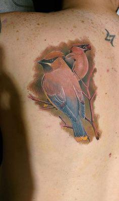 Pinterest the world s catalog of ideas for Cedar springs tattoo