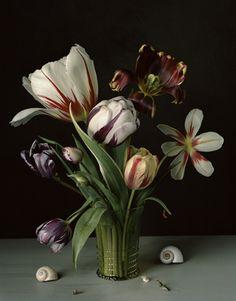 Still Life Photograph by Sharon Core Dutch Still Life, Still Life Art, Floral Photography, Still Life Photography, Art Floral, Flower Vases, Flower Art, Still Life Flowers, Merian