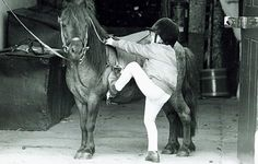 Young Prince William, adorably attempting to mount his all too patient pony.