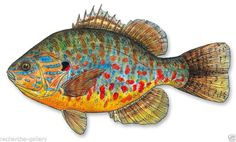 Sculpture: Metal Art Colorful Modern Fish Pumpkinseed Sunfish By Jeff Currier - The Zedign House - Store Fish Wall Art, Fish Art, Colorful Fish, Tropical Fish, Metal Walls, Metal Wall Art, Yellow Fish, Color Yellow, Fish Sculpture