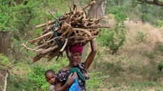 Nachhaltige Energie: Energieberatung im Miombowald