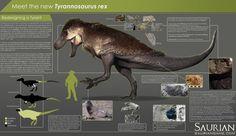 Infographic describing the science behind the appearance of our  Tyrannosaurus rex |  Nick Turinett et al.