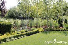 ogród sylwii projekt danusi - Szukaj w Google