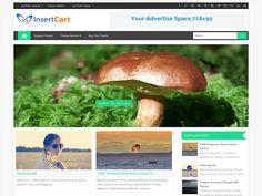 Digital WordPress Theme