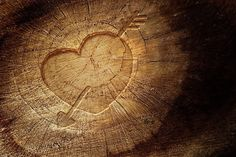 http://goo.gl/k1QuGI #roussetos #woodlove