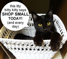 ...Time to SHOP SMALL! It's Small Business Saturday! Use coupon code HOLIDAY20 and get 20% off everything in my Etsy shop (except for wholesale listings!). CLICK HERE to see all of my art, jewelry and gifts: http://www.etsy.com/shop/SusanFa  yePetProjects