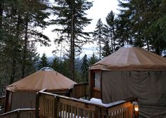 Looking for a luxurious glamping experience in Canada? Check out these glamping sites, from tipis to safari tents and geodesic domes. Family Vacation Destinations, Family Vacations, Vacation Ideas, Riverside Resort, Yoho National Park, Spring Resort, Beautiful Ocean, Picnic Area, Rv Parks