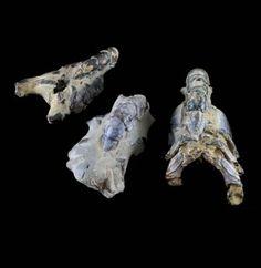 Fossil - Mangrove Lobster