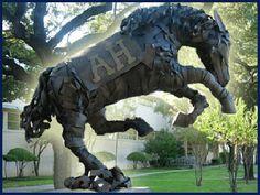 AHISD | Alamo Heights Independent School District | San Antonio, Texas
