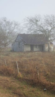 Foggy Day On Old Farm House