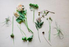 Poppy Creative Agency, Photo by Joy Coakley
