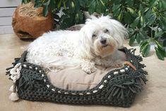 Exklusive Hundebetten aus Textilgarn massgefertigt, aus eigener Manufaktur, made in Switzerland Baby, Design, Accessories, Dog Leash, Dog Accessories, Animals, Infants, Baby Humor, Babies