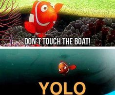 You only live once, Nemo