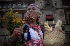 Juzgado desbloquea siembra de maíz transgénico en Méxicocapitalino. Foto: Xinhua / Alejandro Ayala