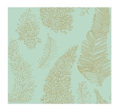York Wallcoverings AC6025SMP By The Sea All Over Coral Spot 8 X 10 Wallpaper Memo Sample, Teal - - Amazon.com