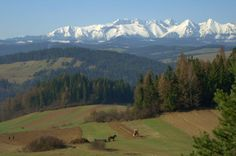 Pieniny (spectacular view From Pieninski National Park to Tatra's National Park. At the bottom working farmers)