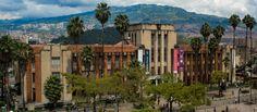 """En el Centro de Medellín hay un refugio para el arte, la cultura y la educación: el Museo de Antioquia, """"un oasis en medio del centro de la ciudad"""", como lo llama Ana Piedad Jaramillo, su directora. Hoy 15 de octubre se cumplen 15 años desde que el Museo se trasladó a esta sede, después de transitar por otros espacios."""