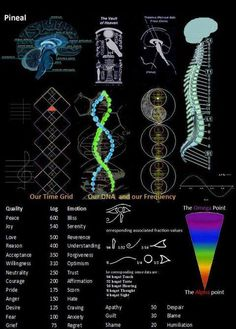 This is an amazing infograph on the pineal gland!