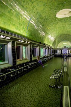 Love the tile colors... photo from Belle Isle Aquarium, Detroit.