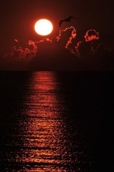 Breathtaking sunset over the ocean by Lailah