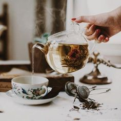 Blossoming tea pouring into a gorgeous teacup with botanic detail