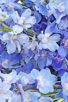 VIBEKE DESIGN: Summer in blue!