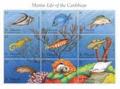 St. Vincent - Marine Life of the Caribbean, 1996 - Sc 2334 Sheetlet of 9 MNH