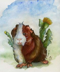 Guinea pig and Dandelions by ~A-shanti on deviantART