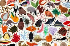 Charley Harper - wish I could find this print for sale somewhere!