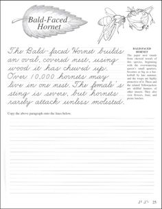 cursive handwriting worksheet on handwriting passages 3rd grade writing cursive handwriting. Black Bedroom Furniture Sets. Home Design Ideas