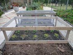 vegetable raised garden bed plans Wooden Raised Bed with