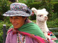 Meet the cutest 1month old baby llama called Hannah., Arequipa, Peru  traveljournals.net