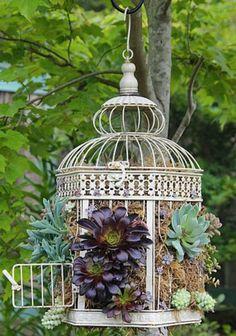 Bird+Cage+Planter