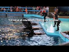 The 7 Most Powerful Quotes From 'Blackfish' - YouTube