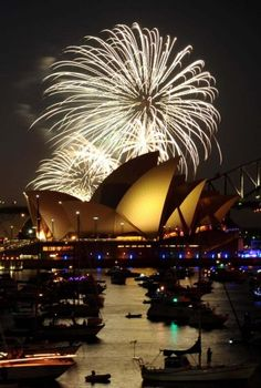 See the New Year's fireworks on Sydney Harbour. Would love the atmosphere and the picnic in the botanical gardens!
