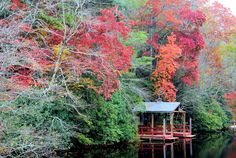 nc mountains in fall | Fall in the NC Mountains by terrya (Photo) | Weather Underground