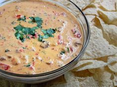 Chile Con Queso Recipe- Yummmmy! Tried this recipie and added corn and black beans for more texture and it was delicious, tasted almost like a cheese enchalada. We had to had nearly twice the amount of milk though because it was way to thick. But other then that it was perfect. Deffinatly at the top of the list.
